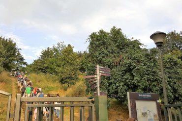 parc départemental de Jean Moulin Les Guillands
