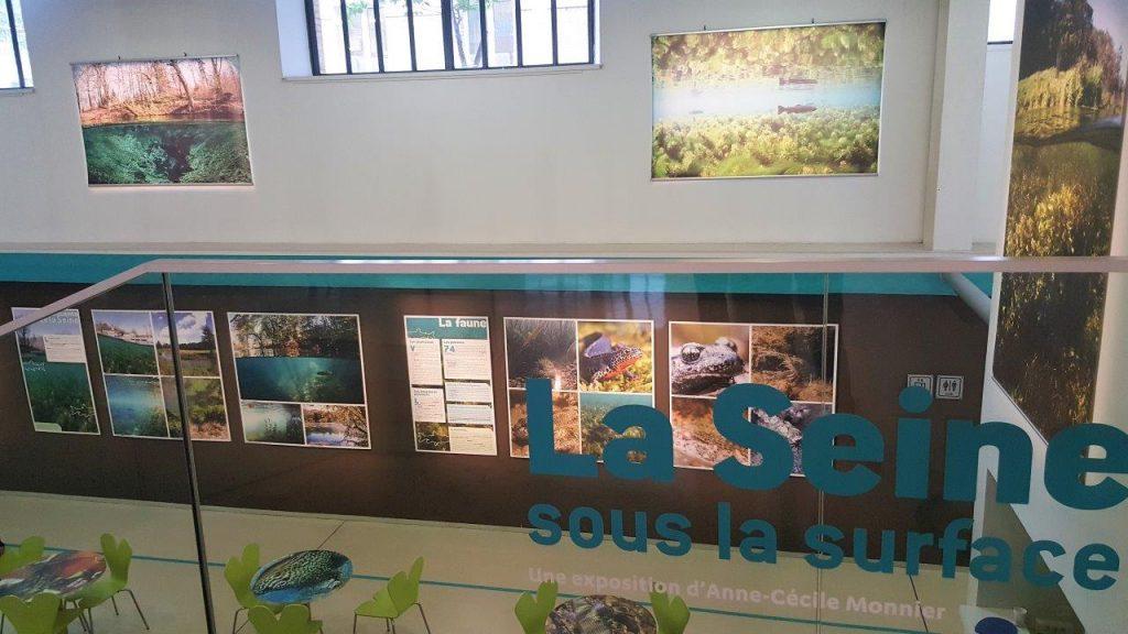 Exposition La Seine sous la surface