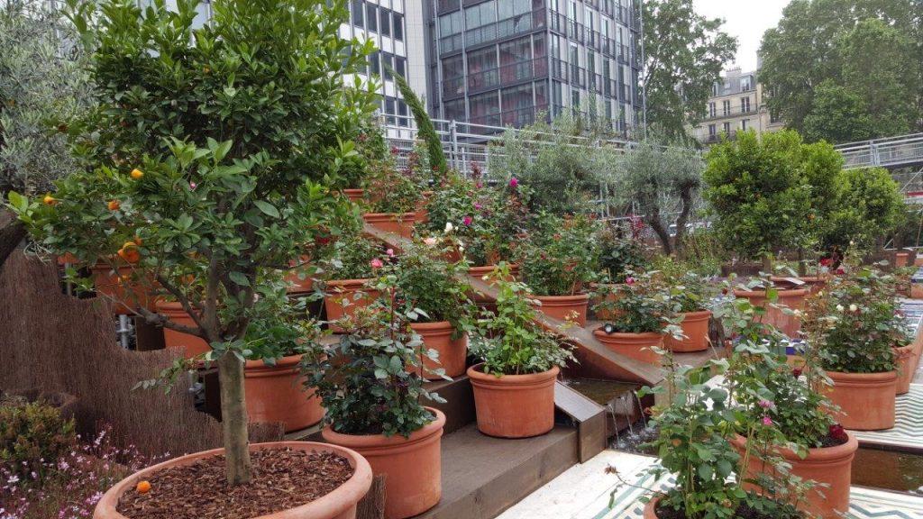 Le jardin éphémère