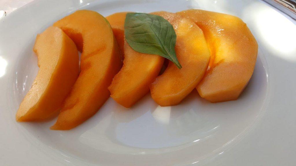 melon nature