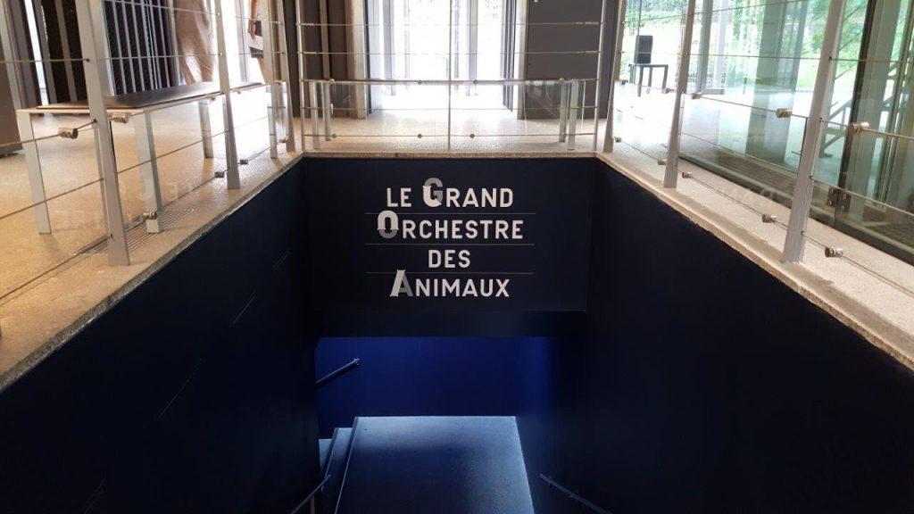 Le Grand orchestre des animaux